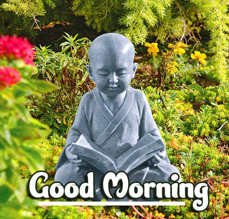 Lovely Gautam Buddha Good Morning Image HD