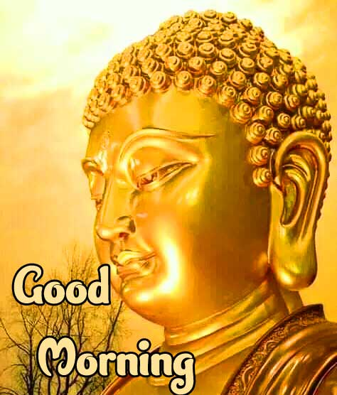 Lovely Gautam Buddha Good Morning Picture HD