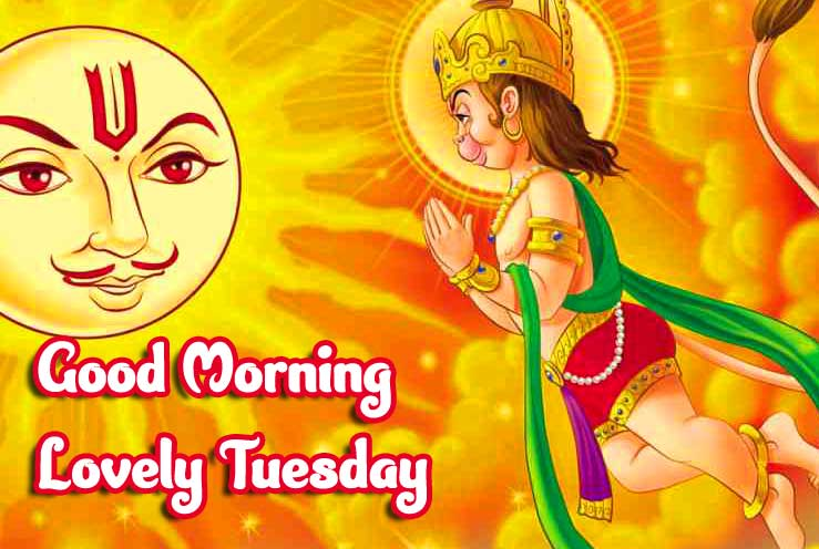 Lovely Son of Sun Pic with Good Morning Message