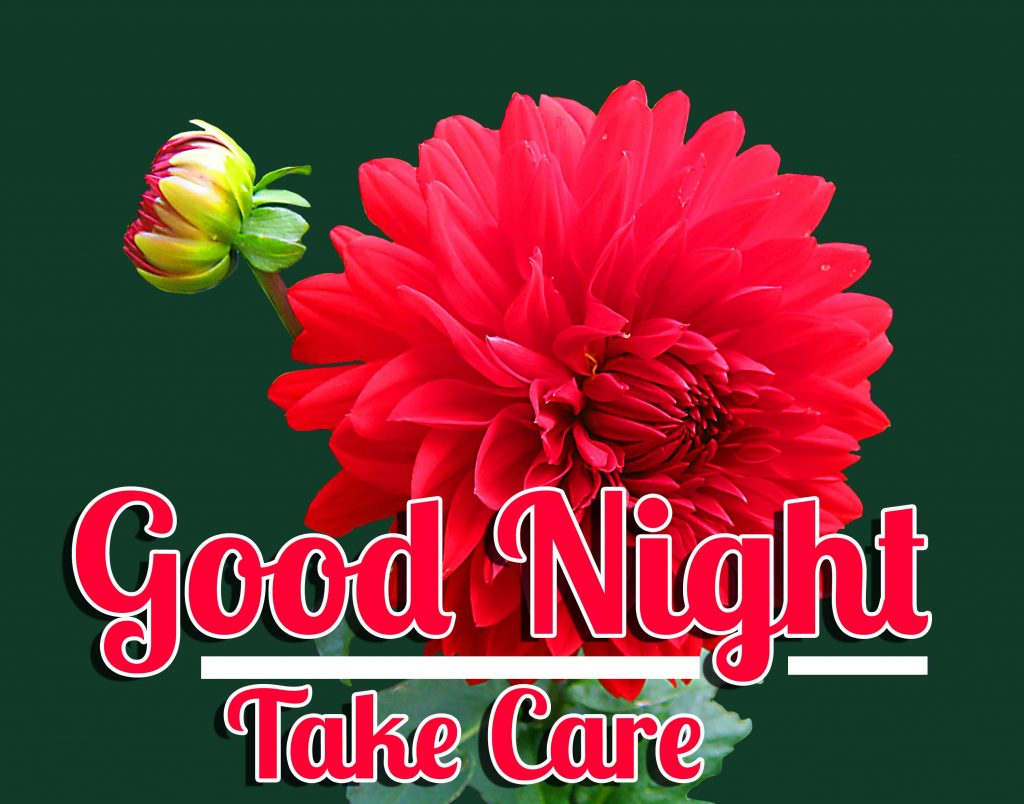 70+ Good Night Take Care Images HD (Latest Collection)