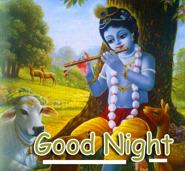 Lovely and Cute Krishna with Good Night Wishing Copy