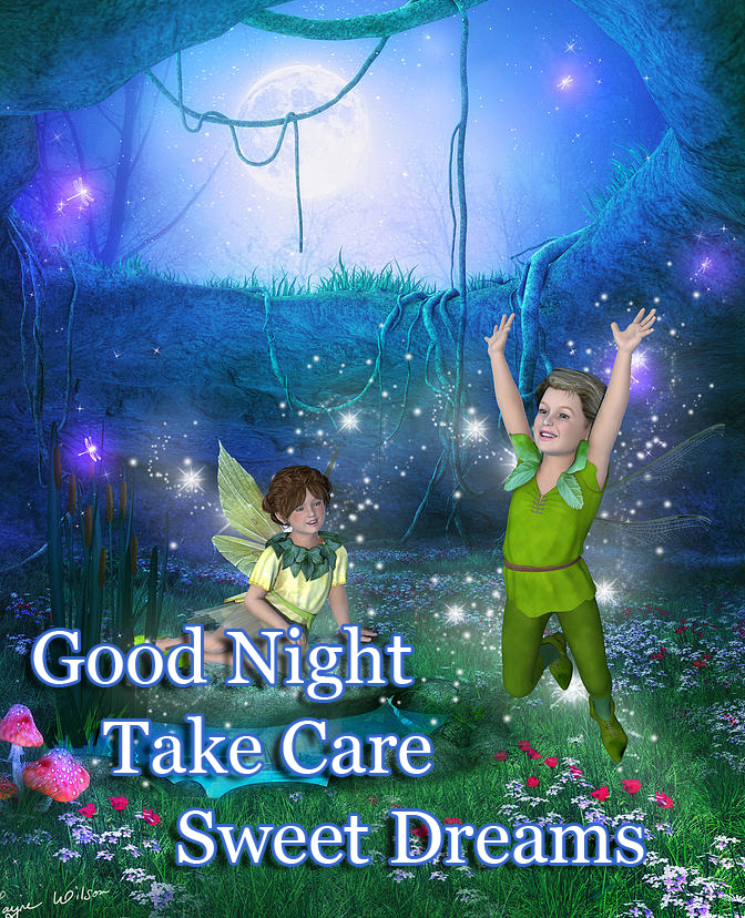 Moonlight Fairies with Good Night Wishing
