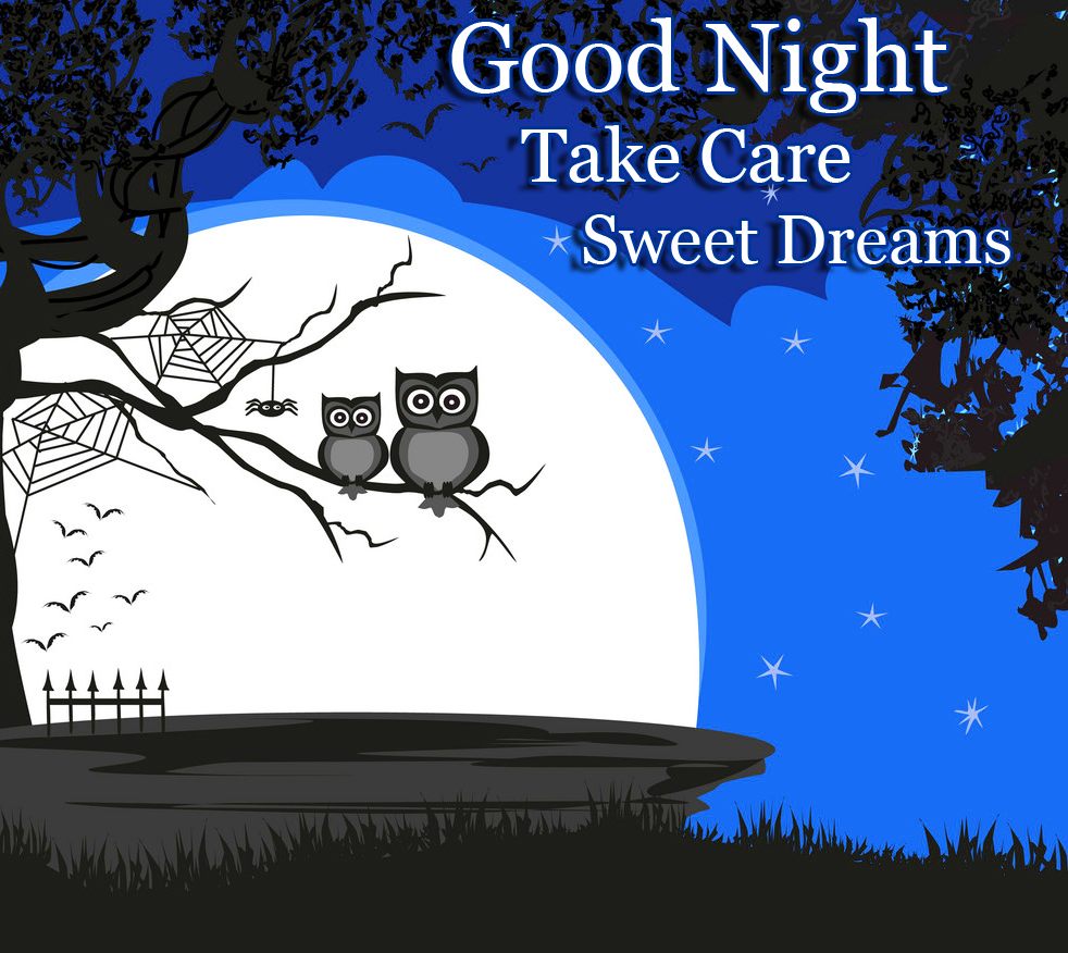 Owls in Moonlight with Good Night Image