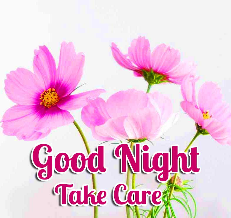 Pink Cute Flowers Good Night Pic