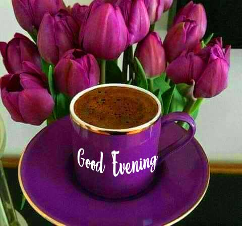 Purple Coffee Cup with Good Evening Wishing Image