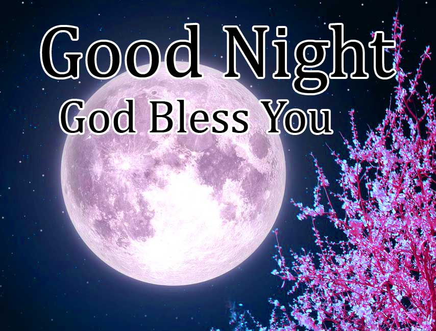 Purple Flowers with Full Moon and Good Night Message