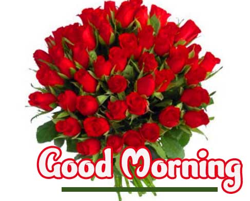 Red Flower Bouquet with Good Morning Wishing