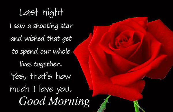 Red Rose with Dark Background and Good Morning Wishing