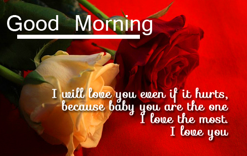 Red and White Rose Good Morning Image