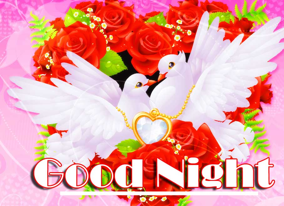 Romantic Dove on Heart with Good Night Message