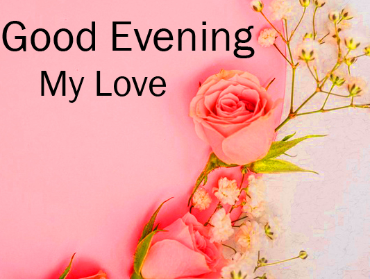 Roses Background with Good Evening Wishing