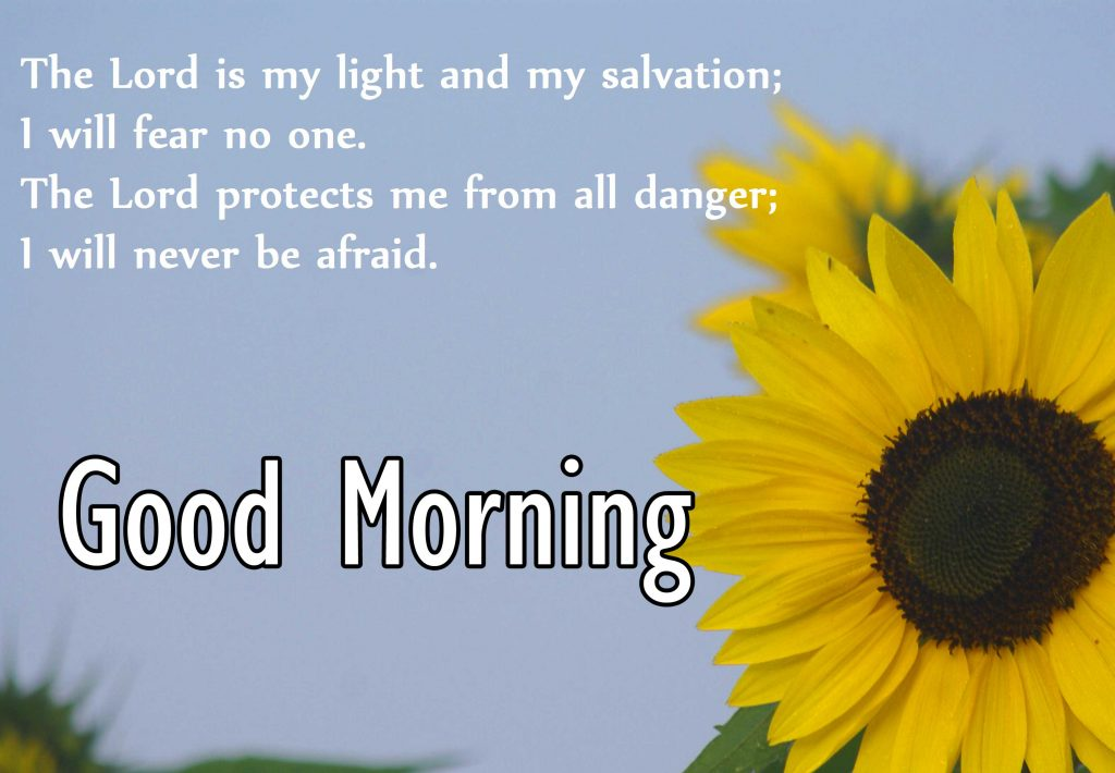72+ Good Morning My Love Quotes (Latest Collection)
