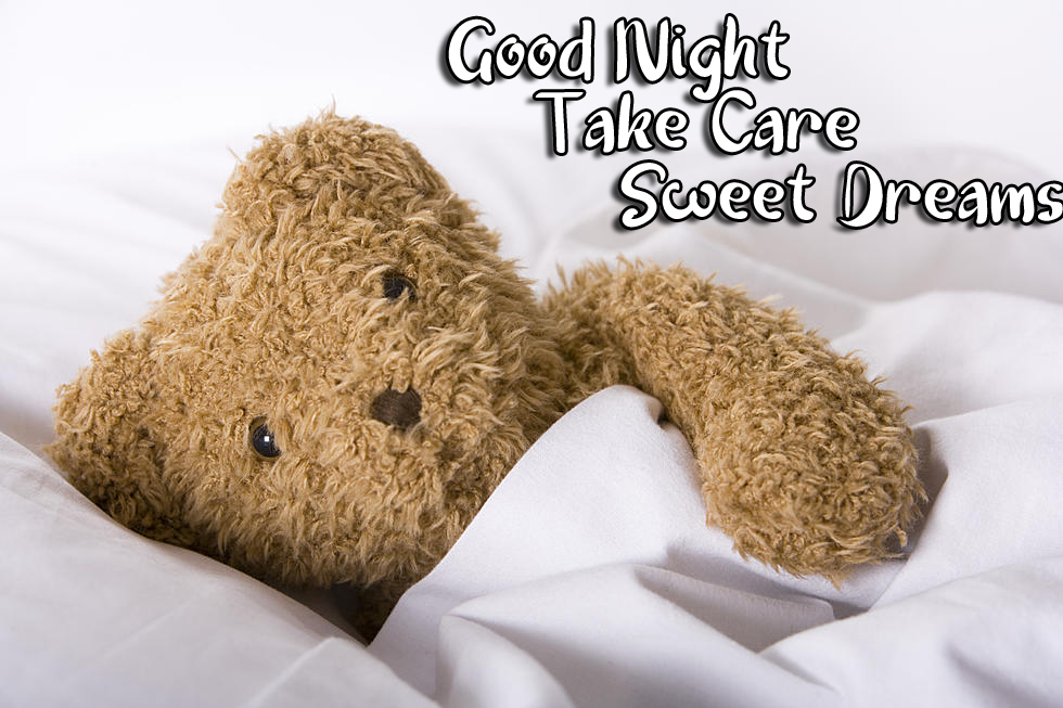 Teddy Bear under Blanket with Good Night Wishing