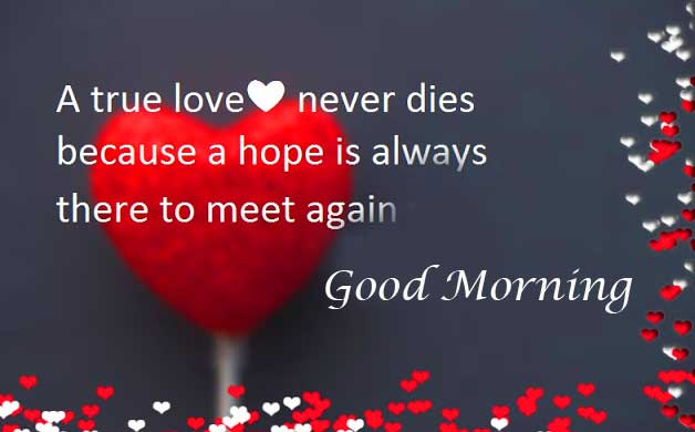 True love Quote Picture with Good Morning Wishing