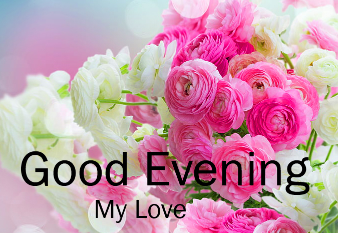 White and Pink with Good Evening Wish