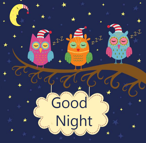 Animated Cute Good Night Image