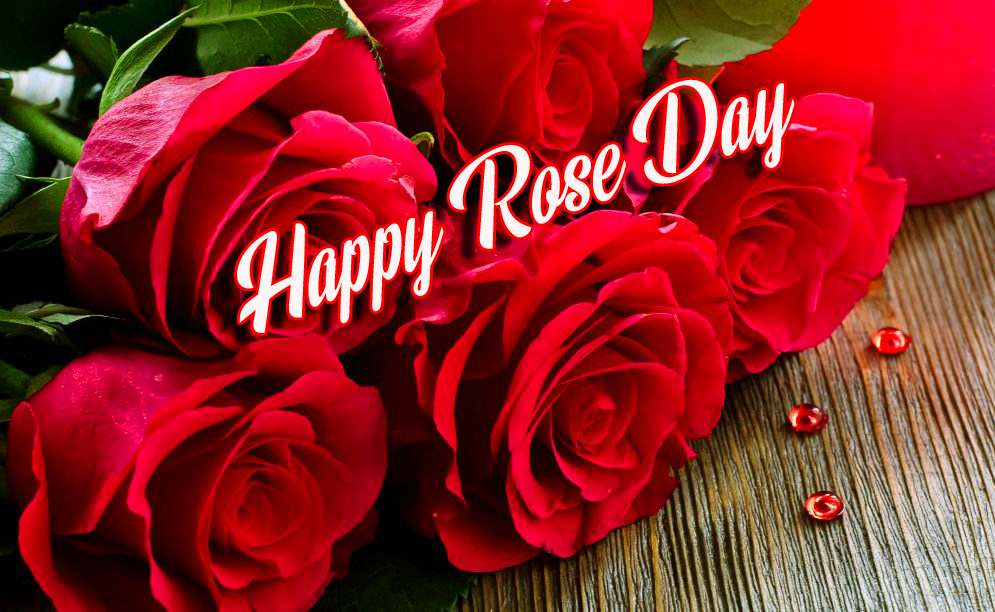Beautiful Red Roses with Happy Rose Day Wish