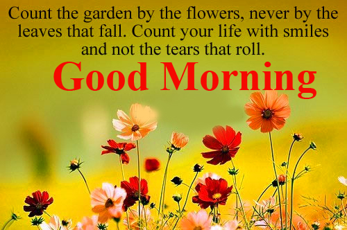 Beautiful and Best Quotes with Good Morning Wish