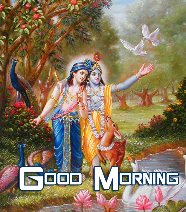 Best Good Morning Krishna Pic