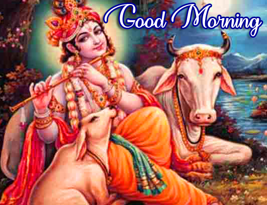 Best and Beautiful Krishna Good Morning Photo
