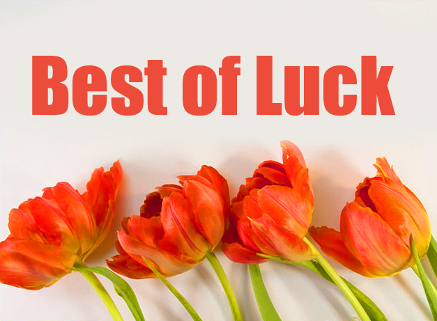 Best of Luck Flowers Photo
