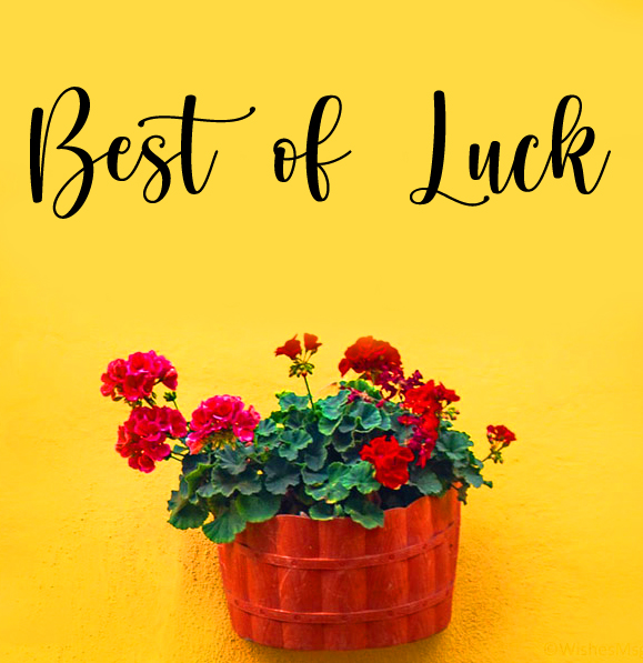 Best of Luck with Flower Basket