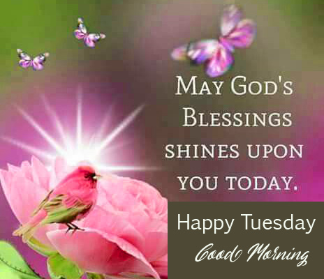 Blessing Happy Tuesday Good Morning Image