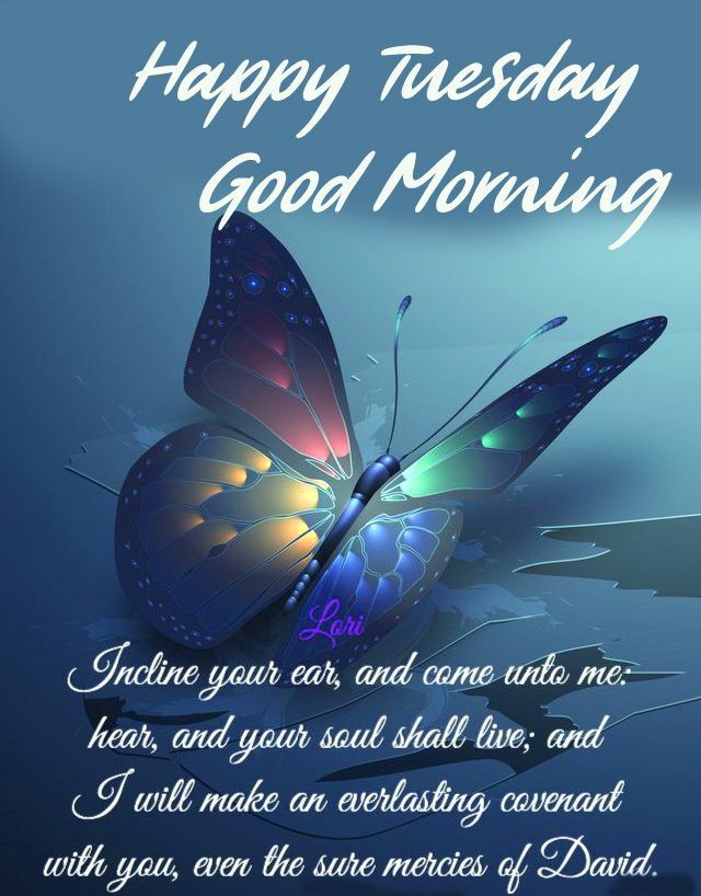 Butterfly Good Morning Happy Tuesday Image Quotes