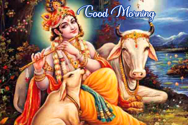 Cows with Krishna Good Morning Image
