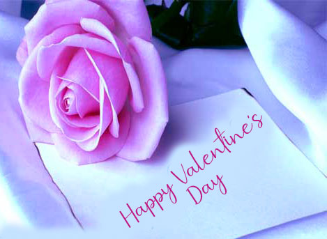 Cute Rose with Happy Valentines Day Wish