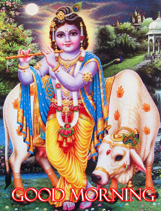 Divine Krishna Good Morning Image