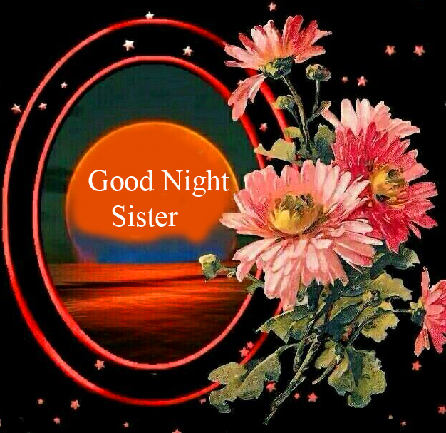 Floral Good Night Sister Image