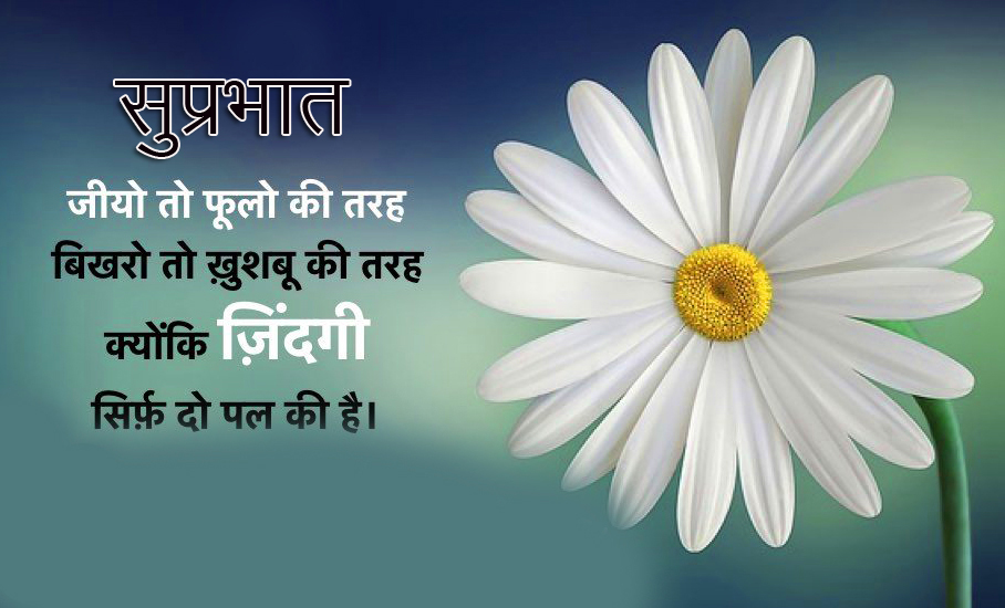 Flower with Suprabhat Wish