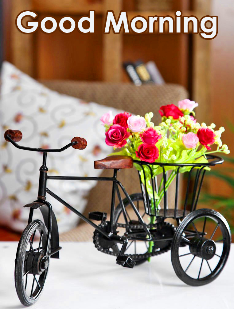 Flowers Cycle Good Morning Image HD