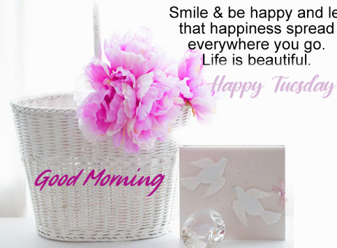 Flowers Good Morning Happy Tuesday Quotes Image