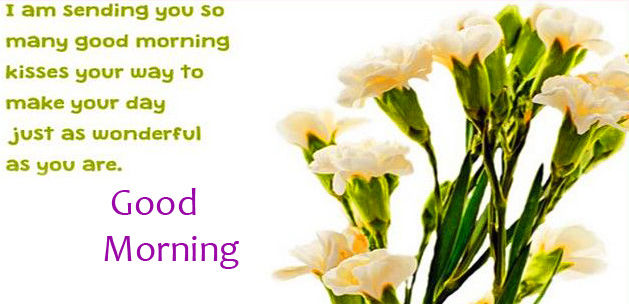 Flowers with Good Morning Message