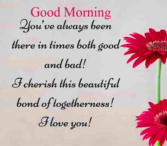 Flowers with Quotes and Good Morning Wish