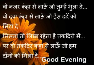 Flowers with Shayari and Good Evening Wish