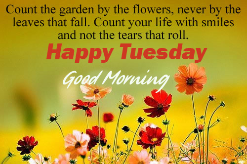 Garden Flowers with Good Morning Happy Tuesday Quotes Image
