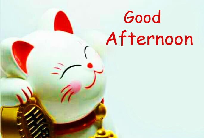 Good Afternoon Wish with Kitty