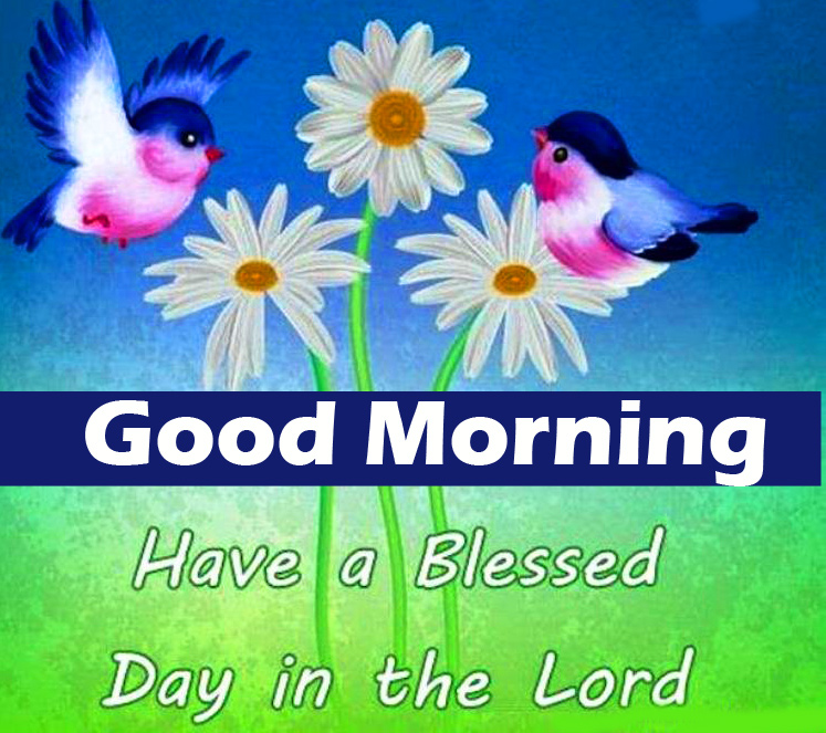 Good Morning Blessed Day Wishes