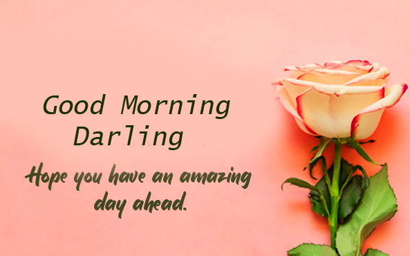 Good Morning Darling Quotes Flower Image