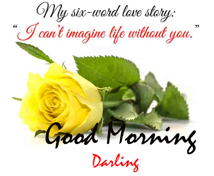 Good Morning Darling with Yellow Rose