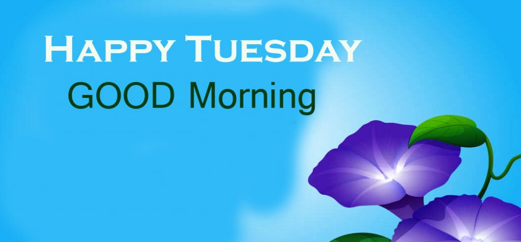 61+ Good Morning Happy Tuesday Images and Pics