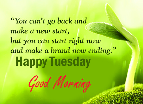 Good Morning Happy Tuesday Image and Pic