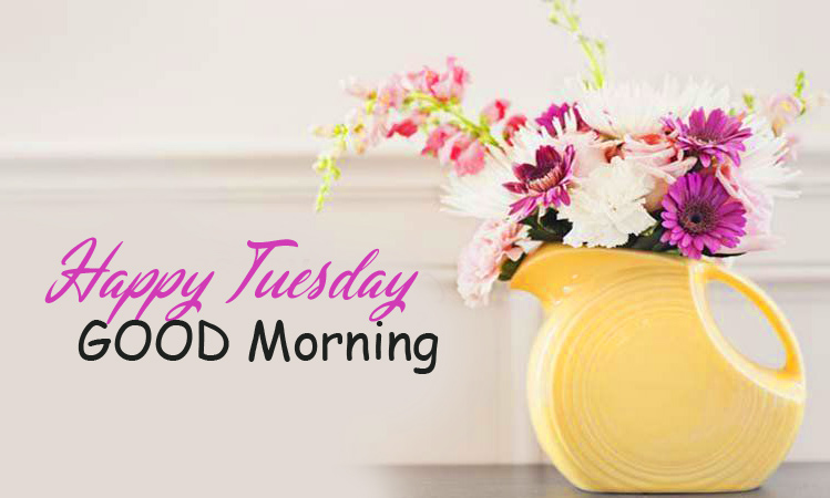 Good Morning Happy Tuesday with Flower Vase Image