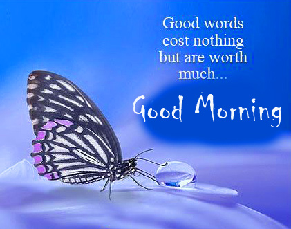 Good Morning Message with Butterfly