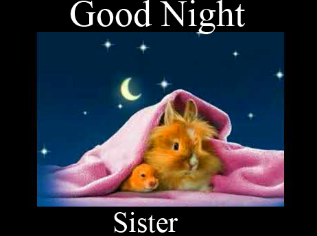 Good Night Sister Picture HD