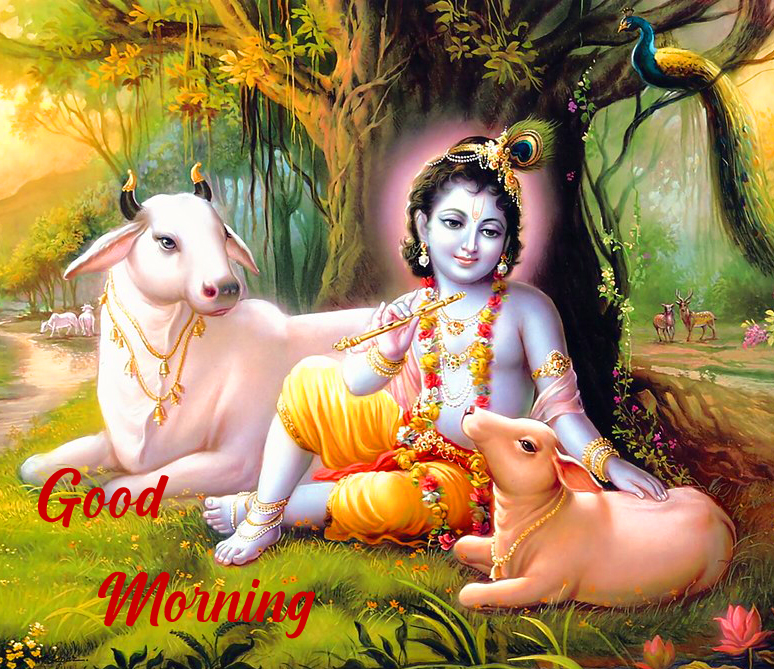 HD Krishna Good Morning Image Full HD