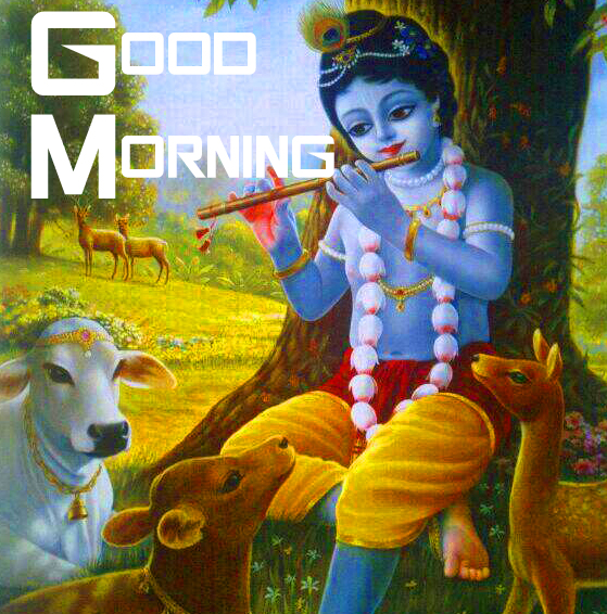 HD Krishna Good Morning Image